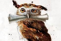 Owl from the illustrated edition of Harry Potter and the Philosopher's Stone