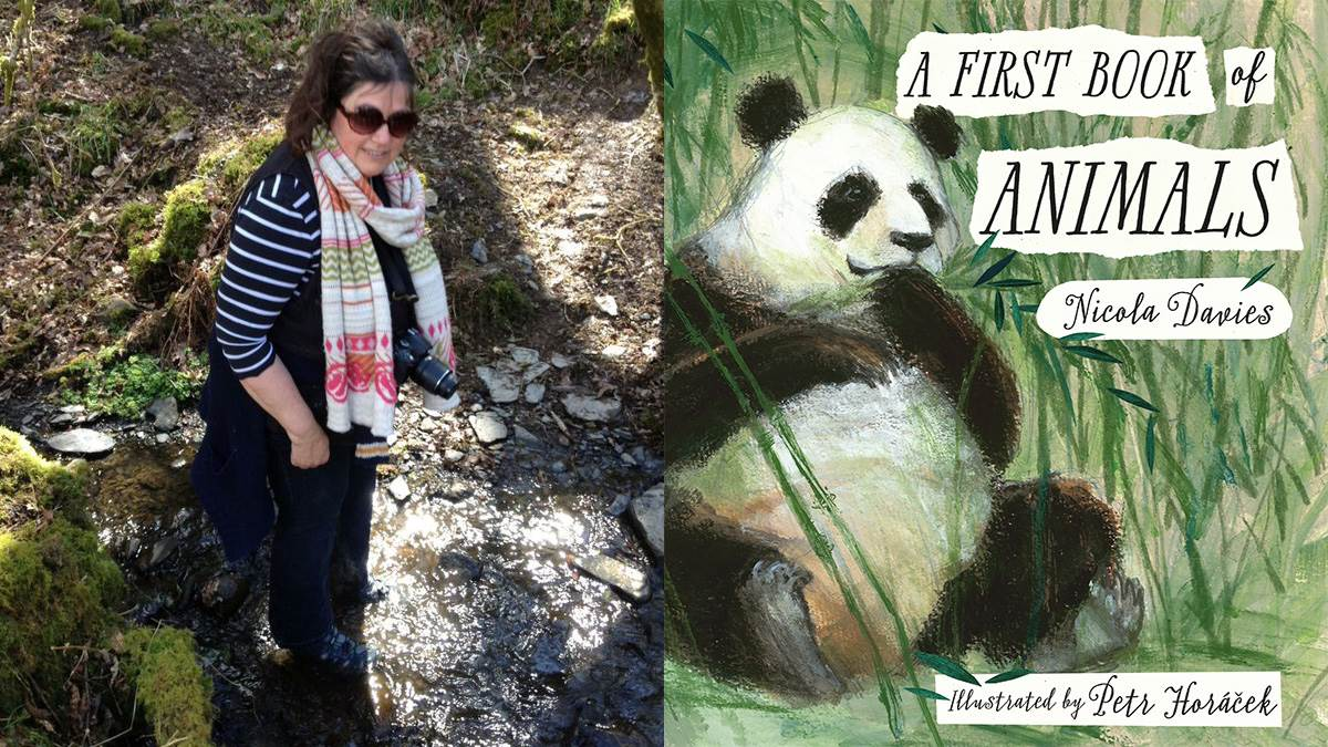 Jackie Morris recommends A First Book of Animals