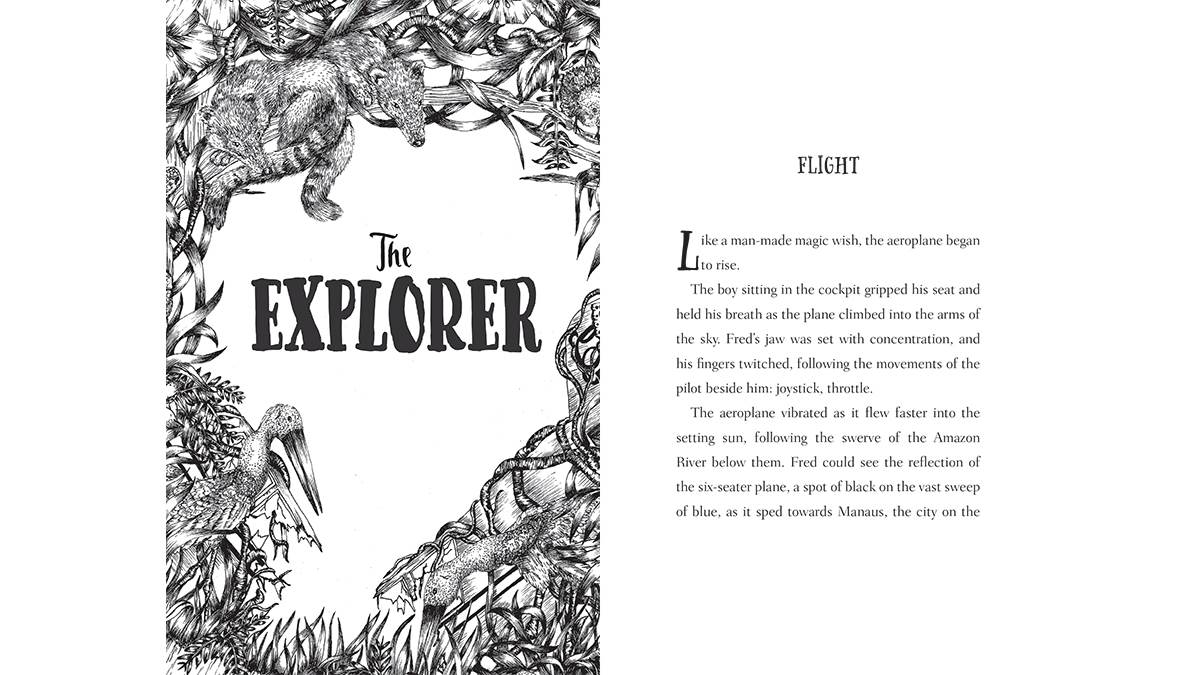 Extract from The Explorer by Katherine Rundell