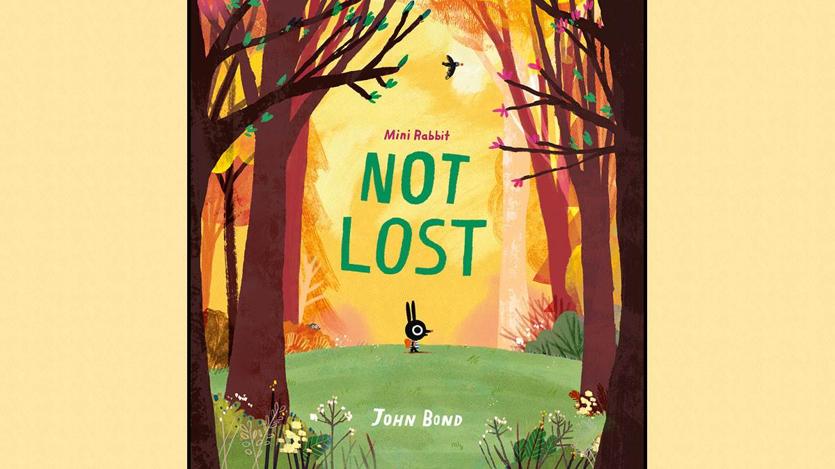 The cover of Mini Rabbit Not Lost