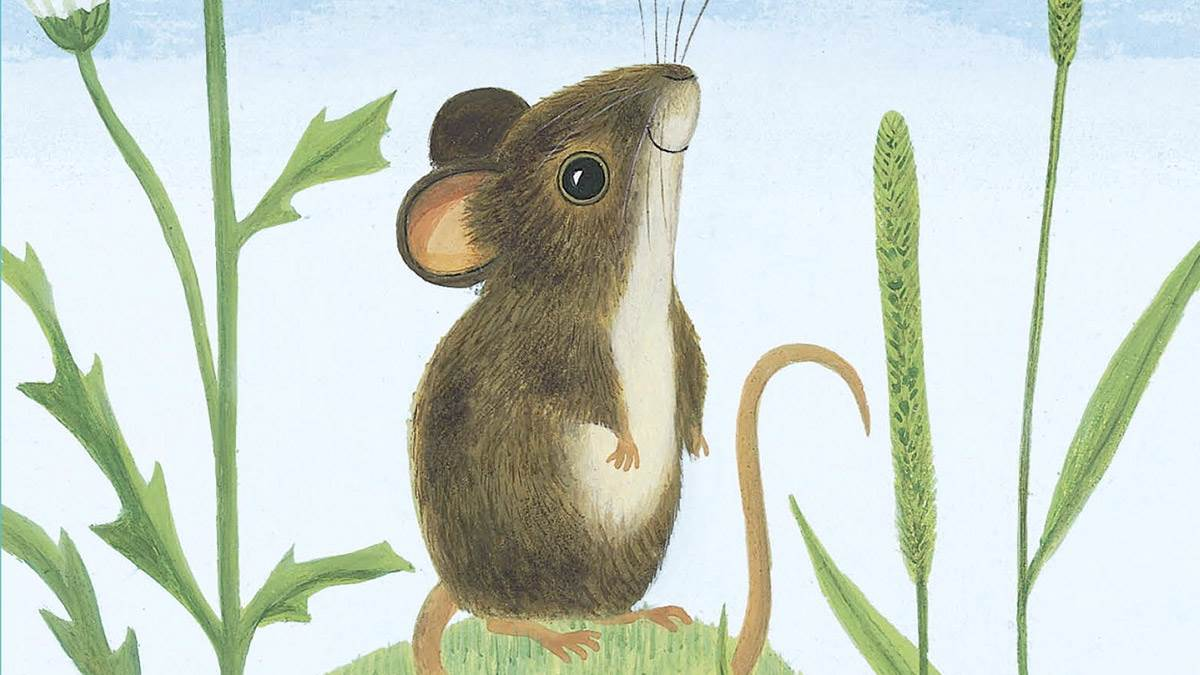 The front cover of I Am a Mouse
