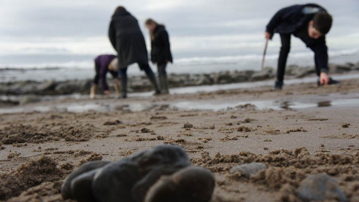 Children searching for objects on the beach