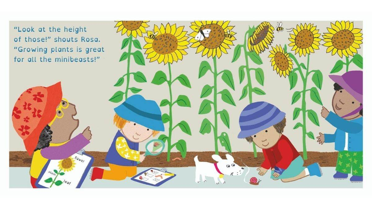 A spread from Jessica Spanyol's book, Rosa's Big Sunflower Experiment
