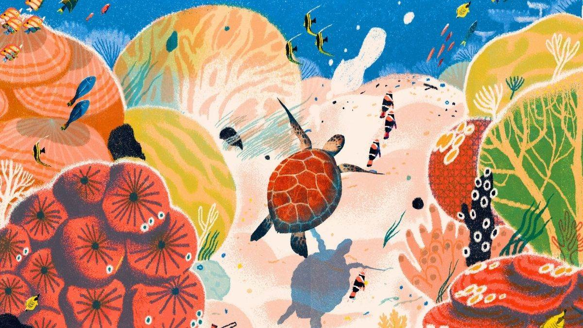 Illustration from The Great Barrier Reef by Helen Scales and Lisk Feng